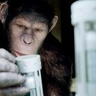 rise_of_apes-pic