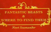FANTASTIC BEASTS AND WHERE TO FIND THEM - Begins Filming!