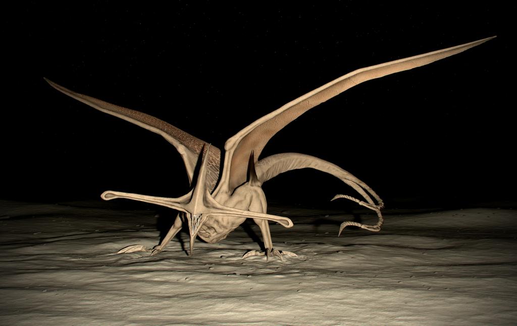 Bioraptor