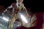 SCI-FI NERD - Genre TV - Arrow: Invasion! (Heroes vs Aliens): A Recap And Review Of Episode 8, Season 5