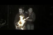 Crypsis - Film review